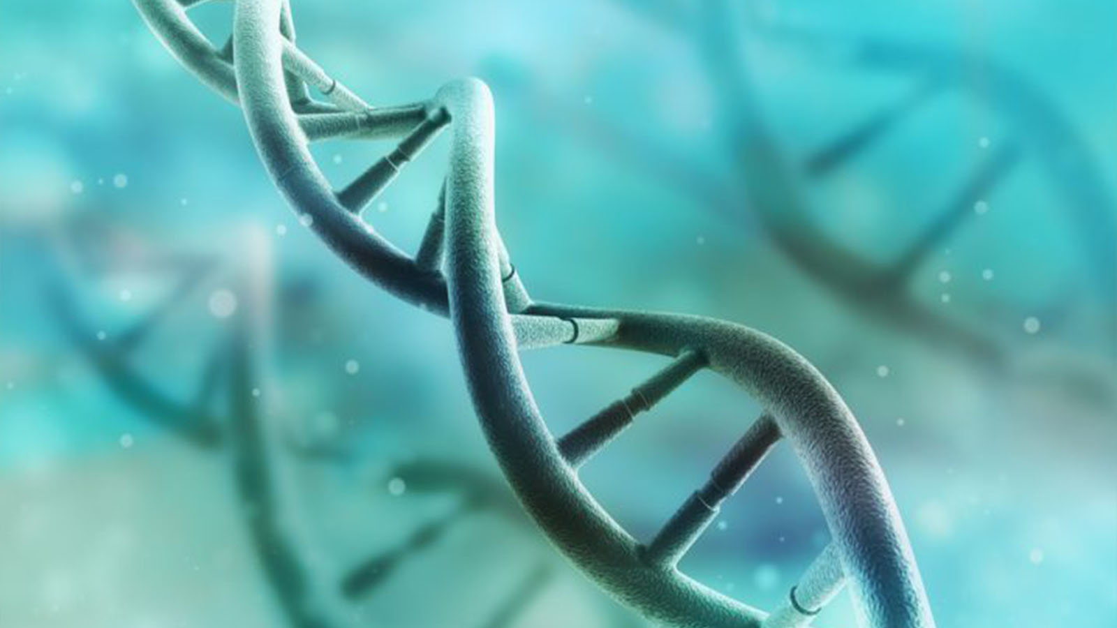 遺伝子検査ダイエットをキットで簡単に!自分の体質に合った方法で痩せよう