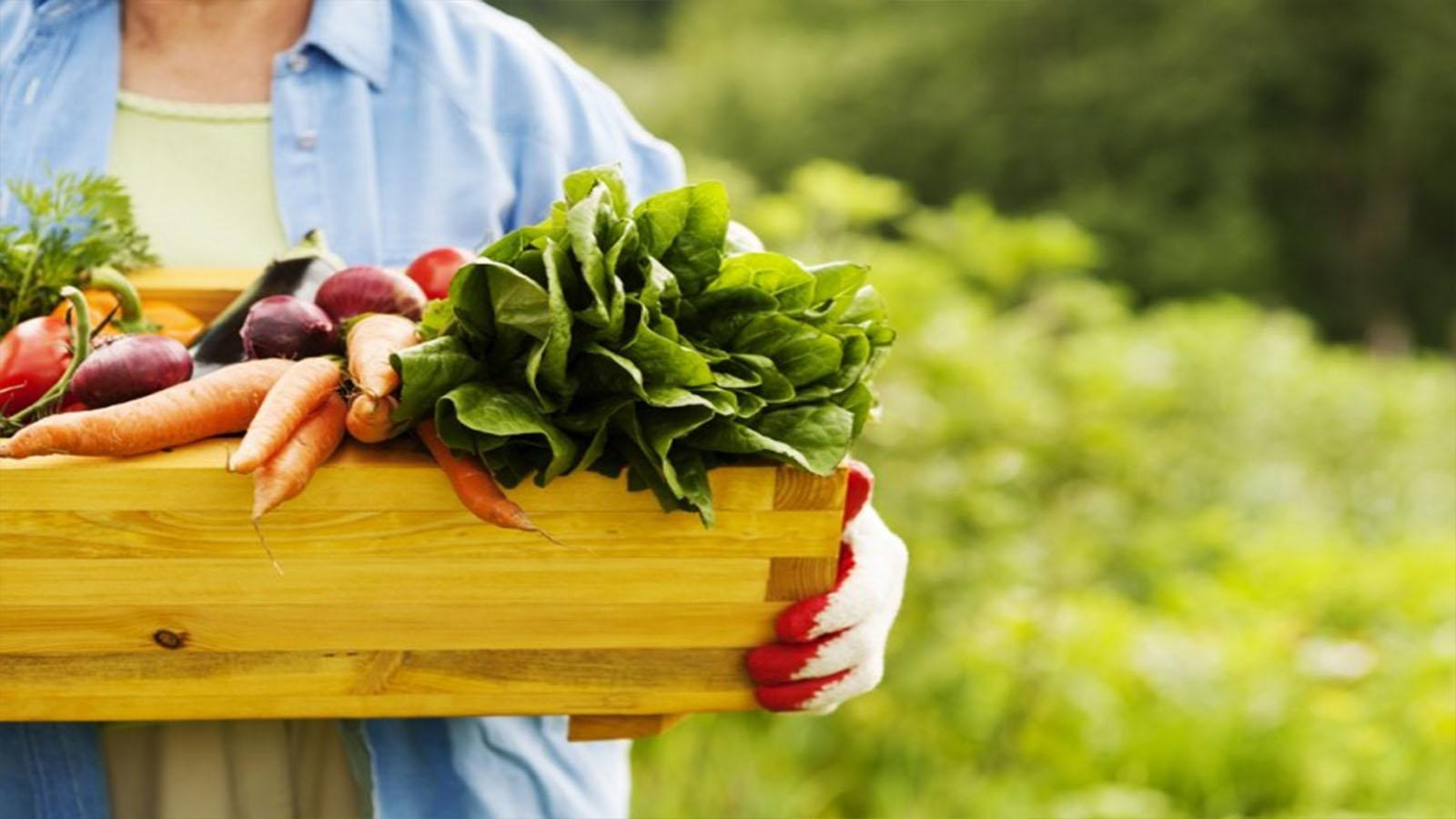 生の有機野菜で作るグリーンスムージーは危険!?