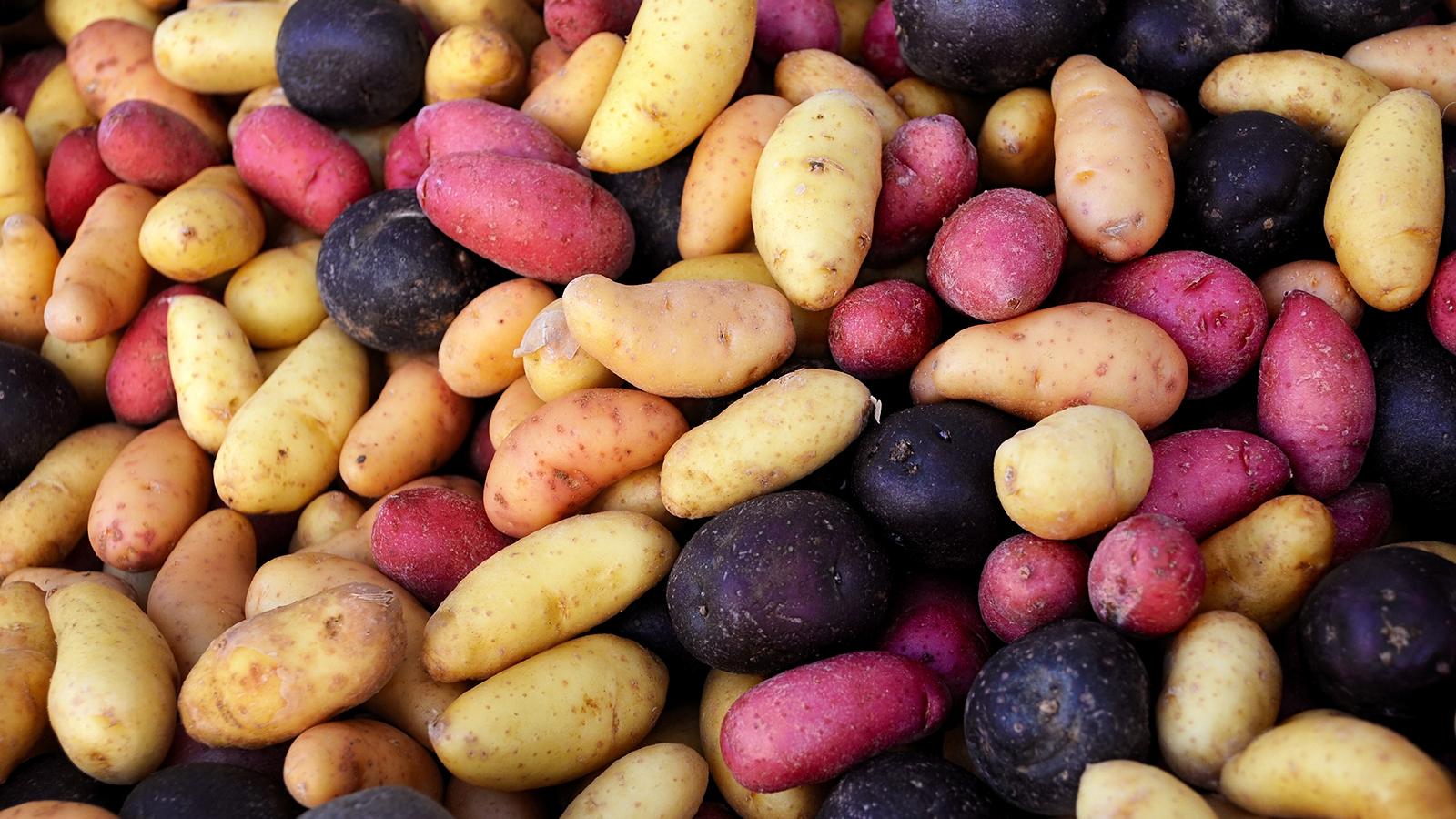 イモ類って糖質制限ダイエット中に食べていい?食べていい芋とダメな芋をご紹介!